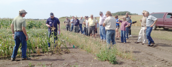 New Crops Field Day-3