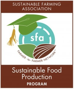 SFProduction LOGO small