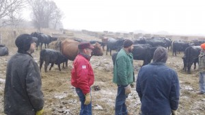 SFA member Ivan Reinke discusses bale grazing and management of his beef operation to participants at the Nov. 22 Keep Cattle in Minnesota workshop in Ottertail County.