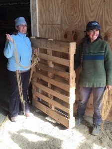 Amy Fenn (left) and Cassi Dutcher build a gate for an animal pen.