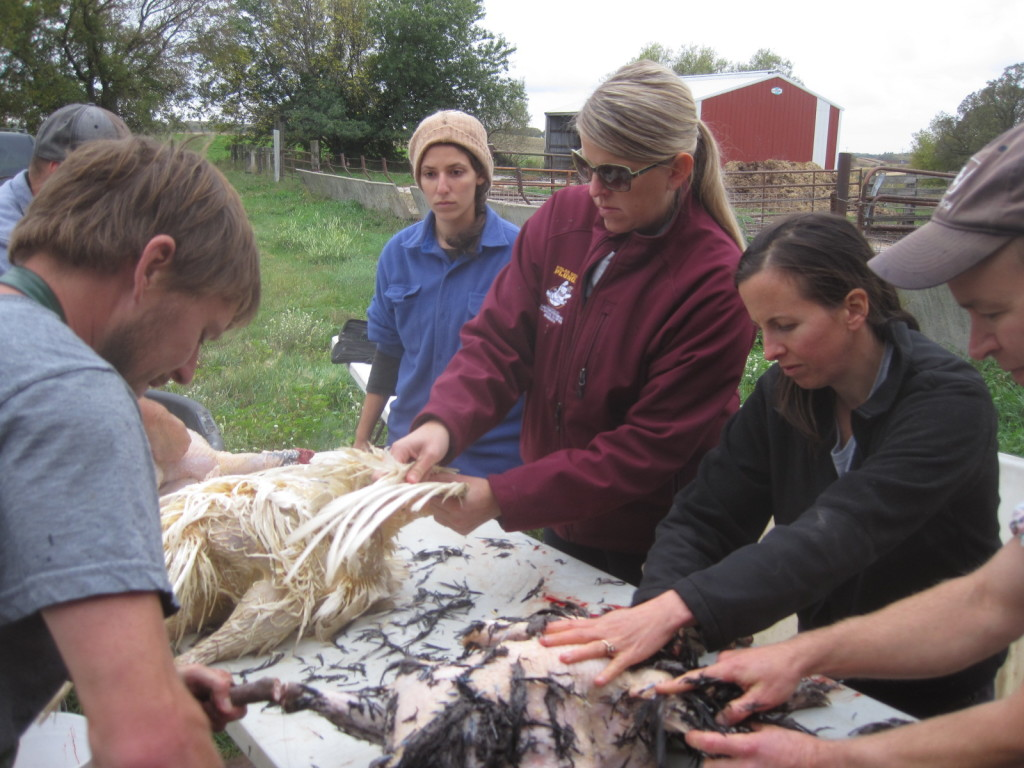 Deep Roots alumnus Andy Hayner, owner of a mobile poultry processing business, teaches students how to pluck turkeys. Shown from left are Hayner, Sarah Mogilevsky, Holly Pearson, Cassi Dutcher and Andy Gricevich.