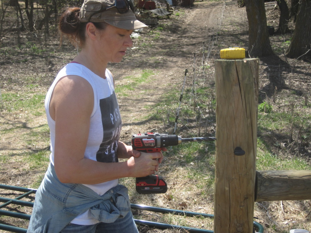 Spring 2015 Farm Skills 101 student Dacia Stiles learns the basics of fence-building.