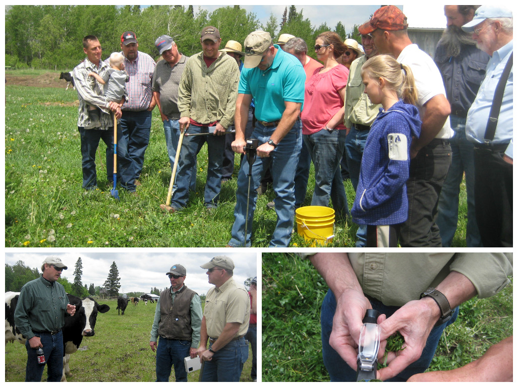 Grazing Workshop collage