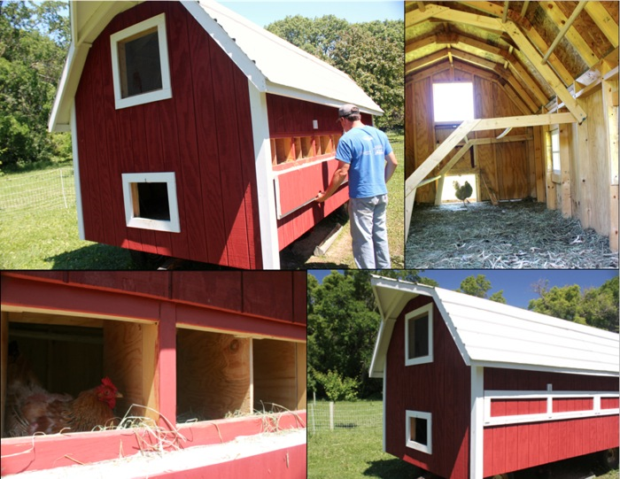 Farmer Ryan Heinen devised and built this chicken coop in spring 2013. The roosts hinge upward for easy cleaning, and the outside egg doors make for simple collection. Photo by Bobby Wenner.