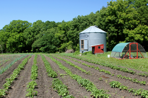 A silo is used as a chick brooder next to the 1.5-acre vegetable plot. Photo by Bobby Wenner.