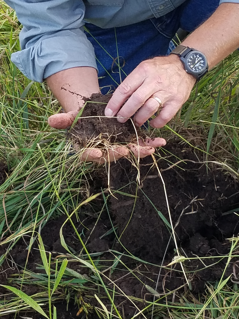 Soil Health – Sustainable Farming Association of Minnesota